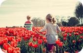 Autisme Parc floral
